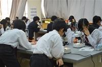 ベトナム教育訓練局